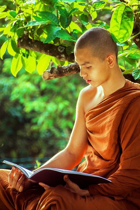 theravada-monk-1750856_960_720